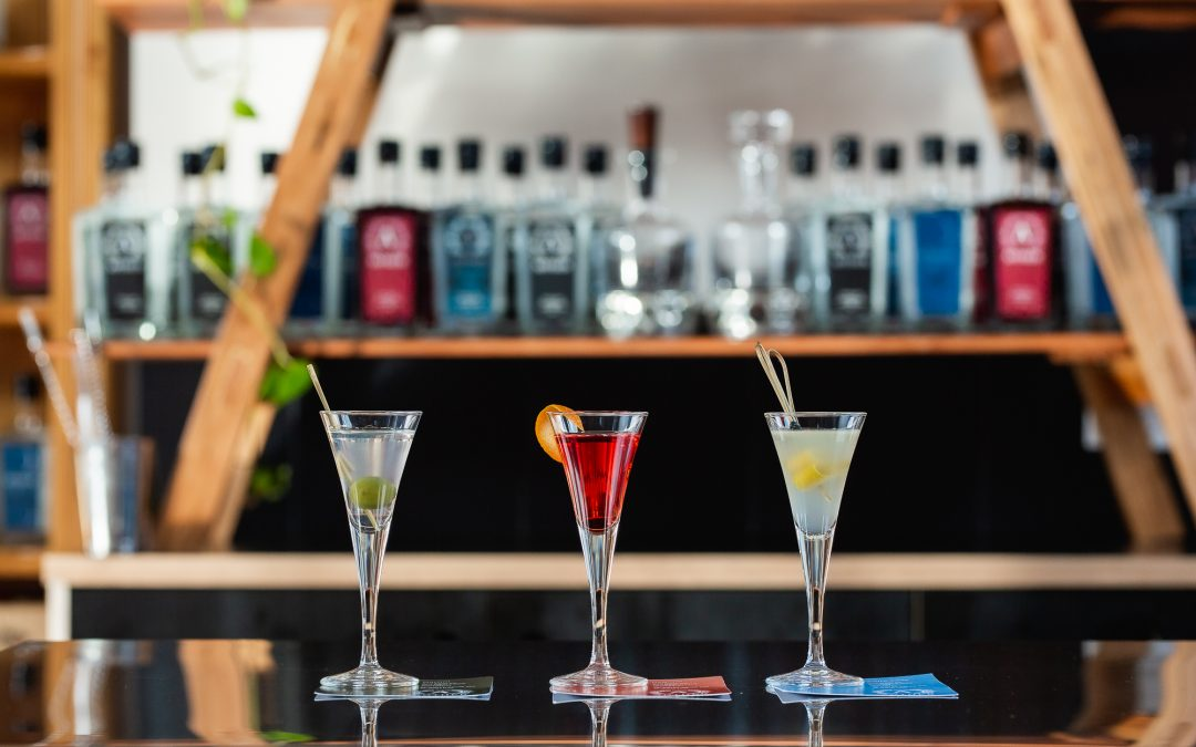 World Gin Day at Anther Distillery